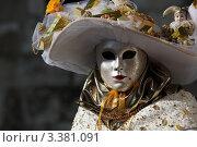 Купить «Венецианский карнавал, женский карнавальный костюм с маской», фото № 3381091, снято 12 февраля 2012 г. (c) Татьяна Лата / Фотобанк Лори