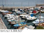 Купить «Хорватия. Курорт Ловран. Истрия. Залив Кварнер», фото № 3384927, снято 7 августа 2011 г. (c) Елена Соломонова / Фотобанк Лори