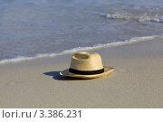 Шляпа. Стоковое фото, фотограф Светлана Мамина / Фотобанк Лори