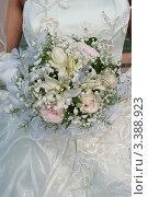 Купить «Букет невесты», фото № 3388923, снято 20 августа 2010 г. (c) Пересыпкина Елена Игоревна / Фотобанк Лори