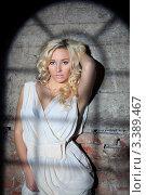 Купить «Портрет красивой девушки стоящей у стены с тенью от окна», фото № 3389467, снято 11 декабря 2011 г. (c) Литвяк Игорь / Фотобанк Лори