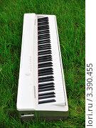 Купить «Синтезатор на траве», фото № 3390455, снято 19 сентября 2010 г. (c) Светлана Давыдова / Фотобанк Лори