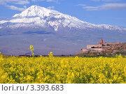 Купить «Гора Арарат. Армения», фото № 3393683, снято 26 мая 2011 г. (c) Евгений Суворов / Фотобанк Лори