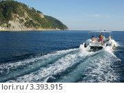 Купить «Морская прогулка», эксклюзивное фото № 3393915, снято 24 сентября 2010 г. (c) Dmitry29 / Фотобанк Лори