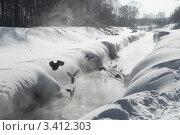Стая уток зимой на реке. Стоковое фото, фотограф Мария Усманова / Фотобанк Лори