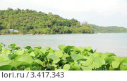 Купить «Вид с берега на море», видеоролик № 3417343, снято 7 апреля 2012 г. (c) Максим Шатохин / Фотобанк Лори