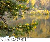 Осенний пруд. Стоковое фото, фотограф Пинчук Екатерина Владимировна / Фотобанк Лори