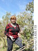 Купить «Дачница весной обрезает сломанные снегом ветки фейхоа», эксклюзивное фото № 3430119, снято 1 апреля 2012 г. (c) Анна Мартынова / Фотобанк Лори