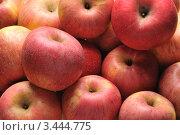Купить «Красные яблоки», фото № 3444775, снято 14 апреля 2011 г. (c) Денис Ларкин / Фотобанк Лори