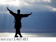 Мужчина занимается гимнастикой у-шу на фоне морского пейзажа. Стоковое фото, фотограф Владимир Николаевич Гневушев / Фотобанк Лори