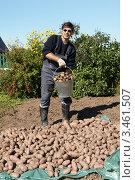 Купить «Молодой человек держит ведро с выкопанным картофелем», фото № 3461507, снято 6 сентября 2011 г. (c) Галина Михалишина / Фотобанк Лори
