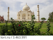 Купить «Тадж-Махал. Агра. Индия», фото № 3463991, снято 24 апреля 2012 г. (c) Яна Королёва / Фотобанк Лори