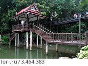 Купить «Мостик через пруд. Тропический сад Нонг Нуч. Паттайя, Таиланд», фото № 3464383, снято 24 марта 2012 г. (c) Григорий Писоцкий / Фотобанк Лори