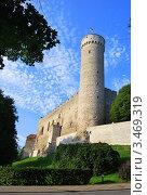 Замок Тоомпеа в Таллине (2010 год). Стоковое фото, фотограф Алла Корниенко / Фотобанк Лори