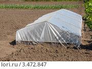 Купить «Теплица-парник на огороде», фото № 3472847, снято 26 апреля 2012 г. (c) Игорь Ткачёв / Фотобанк Лори