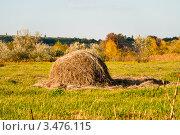 Стог сена. Стоковое фото, фотограф Станислав Малиновский / Фотобанк Лори