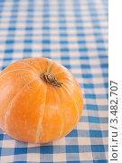 Купить «Тыква на клетчатой скатерти», фото № 3482707, снято 28 октября 2011 г. (c) BestPhotoStudio / Фотобанк Лори