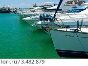 Купить «Яхты в порту», фото № 3482879, снято 8 мая 2008 г. (c) Дмитрий Наумов / Фотобанк Лори