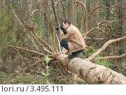 Лесной фотограф. Стоковое фото, фотограф Александр Романов / Фотобанк Лори