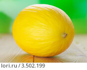 Купить «Желтая дыня на деревянном столе», фото № 3502199, снято 17 ноября 2011 г. (c) BestPhotoStudio / Фотобанк Лори