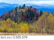 Купить «Осень в Карпатах», фото № 3505079, снято 24 октября 2010 г. (c) Юрий Брыкайло / Фотобанк Лори