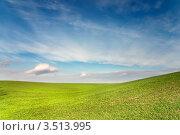 Зелёные холмы под синим небом. Стоковое фото, фотограф Хромушин Тарас / Фотобанк Лори