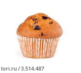 Купить «Кекс с изюмом», фото № 3514487, снято 6 мая 2012 г. (c) Александр Лычагин / Фотобанк Лори