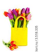 Купить «Желтая сумка с тюльпанами на белом фоне», фото № 3518335, снято 15 января 2012 г. (c) Наталия Кленова / Фотобанк Лори