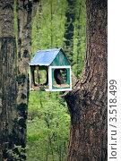 Купить «Кормушка для птиц в виде домика», фото № 3518499, снято 14 мая 2012 г. (c) Елена Шуршилина / Фотобанк Лори