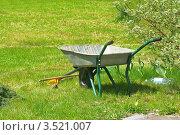 Купить «В саду», фото № 3521007, снято 17 мая 2012 г. (c) Валерия Попова / Фотобанк Лори