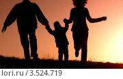 Купить «Семья с дочкой на закате», видеоролик № 3524719, снято 18 июня 2008 г. (c) Losevsky Pavel / Фотобанк Лори