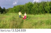 Купить «Родители с маленькой девочкой бегут по летнему лугу», видеоролик № 3524939, снято 2 июля 2008 г. (c) Losevsky Pavel / Фотобанк Лори