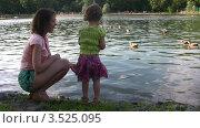 Купить «Женщина и девочка у пруда с утками», видеоролик № 3525095, снято 28 июля 2008 г. (c) Losevsky Pavel / Фотобанк Лори