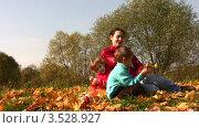 Купить «Мамам с сыном и дочкой сидят в парке на осенних листьях», видеоролик № 3528927, снято 8 октября 2008 г. (c) Losevsky Pavel / Фотобанк Лори
