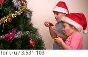 Купить «Мальчик и девочка в колпаках Санты-Клауса вешают игрушки на елку», видеоролик № 3531103, снято 28 декабря 2008 г. (c) Losevsky Pavel / Фотобанк Лори
