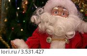 Купить «Санта-Клаус у новогодней елки», видеоролик № 3531427, снято 17 января 2009 г. (c) Losevsky Pavel / Фотобанк Лори