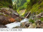 Горный ручей летом, Алтай. Стоковое фото, фотограф Яков Филимонов / Фотобанк Лори