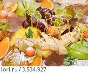 Купить «Фруктовый десерт», эксклюзивное фото № 3534927, снято 28 января 2012 г. (c) Алёшина Оксана / Фотобанк Лори