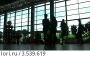 Купить «Пассажиры в Домодедово», видеоролик № 3539619, снято 2 июня 2009 г. (c) Losevsky Pavel / Фотобанк Лори