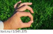 """Купить «Рука показывает знак """"отлично"""" на фоне травы», видеоролик № 3541375, снято 19 сентября 2009 г. (c) Losevsky Pavel / Фотобанк Лори"""