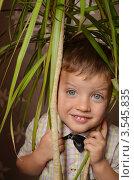 Улыбающийся мальчик под листьями домашнего растения. Стоковое фото, фотограф Денис Омельченко / Фотобанк Лори
