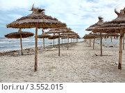 Купить «Пустой пляж с зонтиками в Тунисе», фото № 3552015, снято 1 мая 2012 г. (c) Кекяляйнен Андрей / Фотобанк Лори