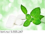 Купить «Жвачка и свежие листья мяты», фото № 3555247, снято 24 сентября 2009 г. (c) Валерия Потапова / Фотобанк Лори