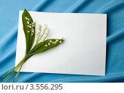 Веточка ландышей на белом листе бумаги. Стоковое фото, фотограф Ольга Денисова / Фотобанк Лори