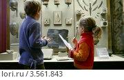Купить «Мальчик и девочка в Историческом музее», видеоролик № 3561843, снято 13 декабря 2009 г. (c) Losevsky Pavel / Фотобанк Лори