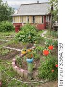 Купить «Маленький сад на даче», фото № 3564159, снято 1 июня 2012 г. (c) Александр Романов / Фотобанк Лори