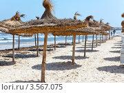Купить «Пляжные зонтики из пальмовых листьев», фото № 3567075, снято 1 мая 2012 г. (c) Кекяляйнен Андрей / Фотобанк Лори
