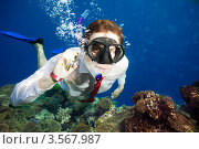Бизнесмен с телефоном под водой. Стоковое фото, фотограф Сергей Новиков / Фотобанк Лори