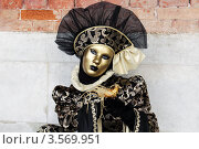 Венецианский карнавал (2012 год). Стоковое фото, фотограф Наталья Свирина / Фотобанк Лори