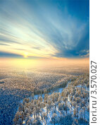 Вид сверху на хвойный лес зимой. Стоковое фото, фотограф Владимир Мельников / Фотобанк Лори